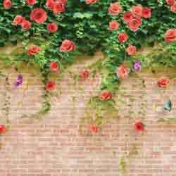 vaigai-3d-wallpicture-3
